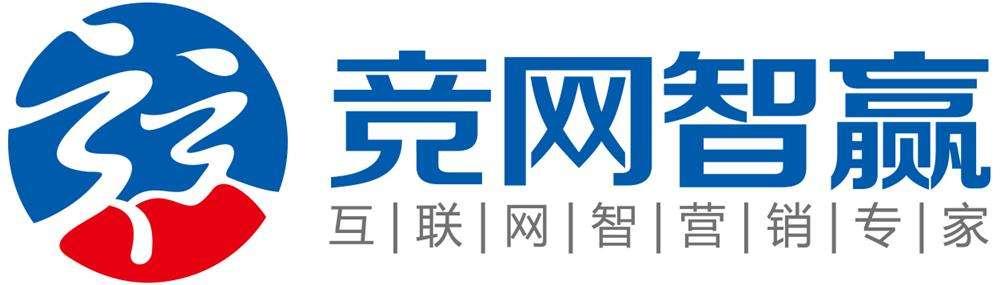 湖南竞网视频会议项目