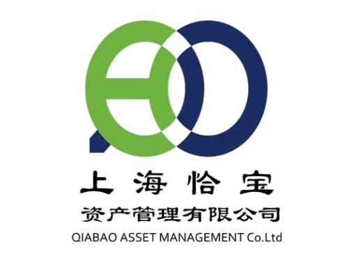 上海恰宝资产管理有限公司视频会议项目